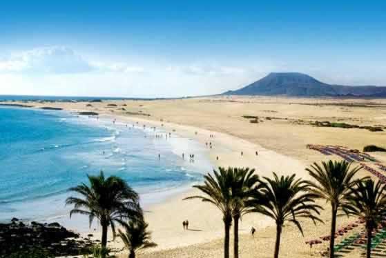 Fuerteventura fuerteventura canary islands spain for Riu oliva beach fuerteventura